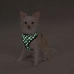 View Image 2 of Casual Canine Skull & Crossbone Harness - Black