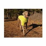 View Image 1 of Climate Changer Fleece Dog Jacket by RuffWear - Lichen Green