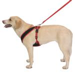 View Image 3 of Cloak & Dawggie Snap-N-Go Dog Harness - Black Mesh with Red Trim