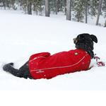 View Image 3 of Cloud Chaser Soft Shell Dog Jacket by RuffWear - Red Rock
