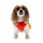 View Image 2 of Collegiate Cheerleader Dog Costume