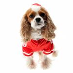 View Image 3 of Collegiate Football Player Dog Costume - Red