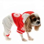 View Image 1 of Collegiate Football Player Dog Costume - Red