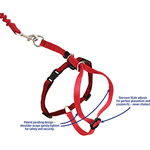 View Image 3 of Come with Me Kitty Harness & Bungee Leash - Green