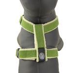 View Image 1 of Cozy Hemp Harness by Planet Dog - Apple Green