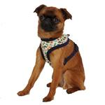 View Image 1 of Dino Dog Harness - Navy