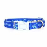 View Image 2 of Dog is Good Bolo Dog Collar - Sky Diver Blue