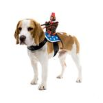 View Image 1 of Dog Riders Harness Halloween Costume - Circus Monkey