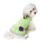 View Image 1 of Double Ruffle Knit Dog Dress with Rosette - Lime
