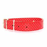 View Image 1 of Canine Charmers Dog Collar - Red Stars