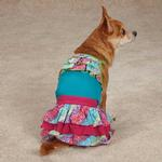 View Image 2 of East Side Collection Confetti Ruffle Dog Tank - Bluebird