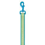 View Image 1 of East Side Collection Gingham Sweetie Dog Leash - Bluebird