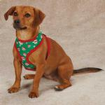 View Image 1 of Holiday Monkey Business Dog Harness - Ty