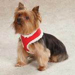 View Image 1 of Jolly Dog Harness