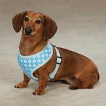 View Image 1 of East Side Collection Prep School Dog Harness - Blue Plaid