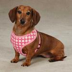 View Image 1 of East Side Collection Prep School Dog Harness - Pink Plaid