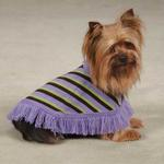 View Image 1 of East Side Collection Preppy Dog Poncho - Violet