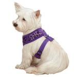 View Image 1 of Vibrant Leopard Dog Harness - Ultra Violet