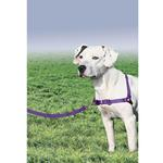 Easy Walk Nylon Harness by Premier - Deep Purple