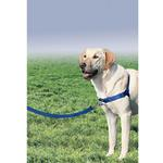 Easy Walk Nylon Harness by Premier - Royal Blue