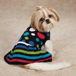 View Image 2 of Electric Knit Dog Sweater Dress