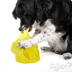 View Image 1 of Extreme Hide-A-Squirrel Dog Toy