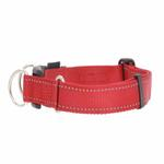 View Image 1 of EzyDog Double Up Dog Collar - Red