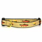 Fly Fishing Dog Collar by Up Country