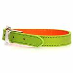 View Image 1 of FouFou Reversible Dog Collar - Green/Orange