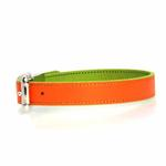 View Image 3 of FouFou Reversible Dog Collar - Green/Orange