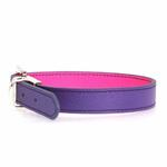 View Image 1 of FouFou Reversible Dog Collar - Purple/Fuchsia