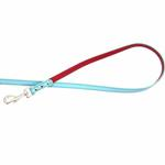 View Image 4 of FouFou Reversible Dog Leash - Blue/Red