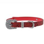 View Image 1 of Foxy Glitz Dog Collar with Letter Strap - Red