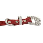 View Image 3 of Foxy Glitz Dog Collar with Letter Strap - Red