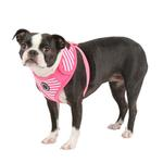 View Image 1 of Frontier Superior Dog Harness by Puppia - Pink