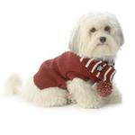 View Image 1 of Frosty's Snowflake Dog Scarf - Brick Red