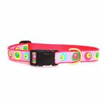 View Image 2 of Funky Pink Circles Dog Collar by Up Country