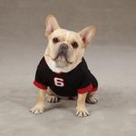 View Image 1 of Game Day Dog Jersey - Black