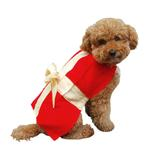 View Image 1 of Gift Box Christmas Dog Costume