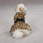 View Image 3 of Gold Print Leopard Dog Dress by Zack & Zoey