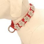 View Image 1 of Gracie Silver on Red Daisy Dog Collar