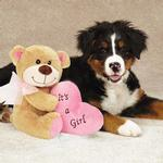 View Image 1 of Grriggles Bundle of Joy Bears Dog Toy - Pink Girl