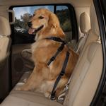 View Image 1 of Guardian Gear Dog Safety Car Harness - Black