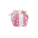 View Image 1 of Happy Birthday Gift Toy by Hip Doggie - Pink