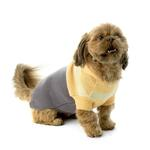 View Image 1 of Harley's Hooded Dog Sweater - Cornsilk & Gray