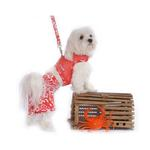 View Image 1 of Hawaiian Print Dog Board Shorts - Red