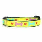 View Image 1 of Heart and Bone Dog Collar by Up Country