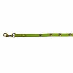 View Image 4 of Hematite Pebbles Dog Leash - Green