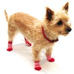 View Image 4 of Home Comfort Traction Control Dog Socks - Pink & Red