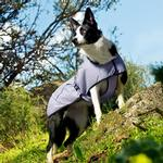 View Image 2 of Hurtta Cooling Dog Coat - Lilac